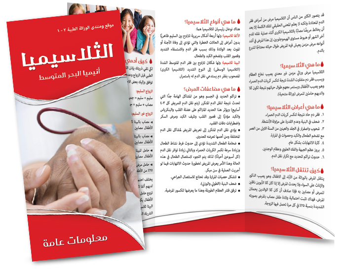 TH2014_Brochure_ web