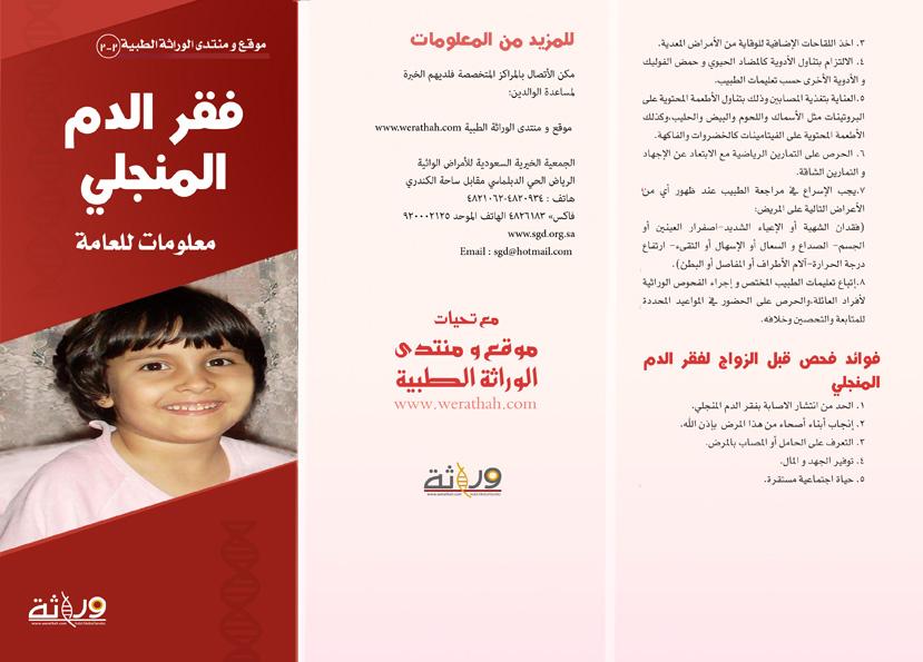 مطوية الحملة 2010