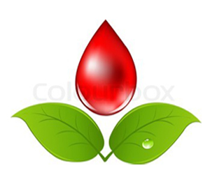 معاناة الثلاسيميا مع نقص الدم!!