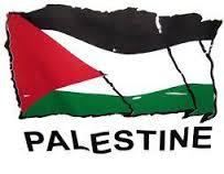نتيجة زواج الاقارب:كيف يعيش مرضى الثلاسميا بغزة؟