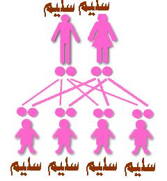 الوراثة المتنحية